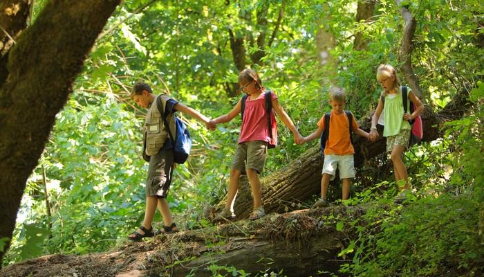 Tipos De Campamento De Verano Material Escolar Blog