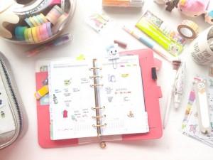Diferencia entre Agenda Anual y Agenda Escolar